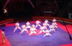 Витольд Петровский выступил на Фестивале боевых искусств в брянском цирке