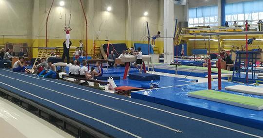 Польза гимнастики для детей