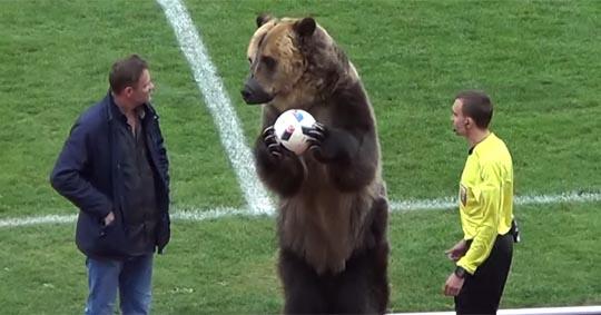 Реформатор Газзаев выведет российский футбол на новый уровень