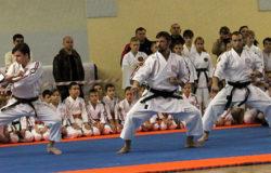 VII юношеские игры боевых искусств Брянской области пройдёт 30 ноября
