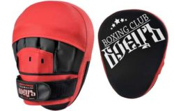 Разновидности лап для бокса