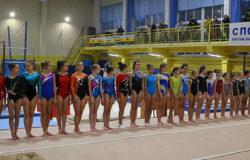 В Брянске открылись всероссийские соревнования по спортивной гимнастике