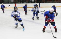"""Лучшие юные хоккеисты нашего региона вошли в состав команды """"Брянская область"""""""