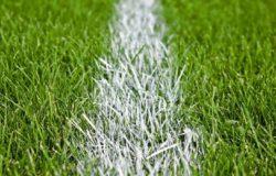 В этом году ремонтные работы проведутся на стадионах Брянска, Унечи и Стародуба