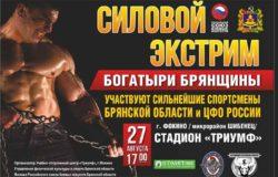 27 августа под Брянском пройдет шоу «Богатыри Брянщины″