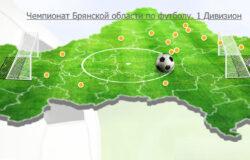 В брянском чемпионате по футболу еще остались вопросы