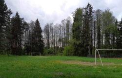 В Брянской области детские лагеря будут работать в особом режиме