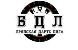 В Брянске пройдёт турнир по дартсу среди новичков